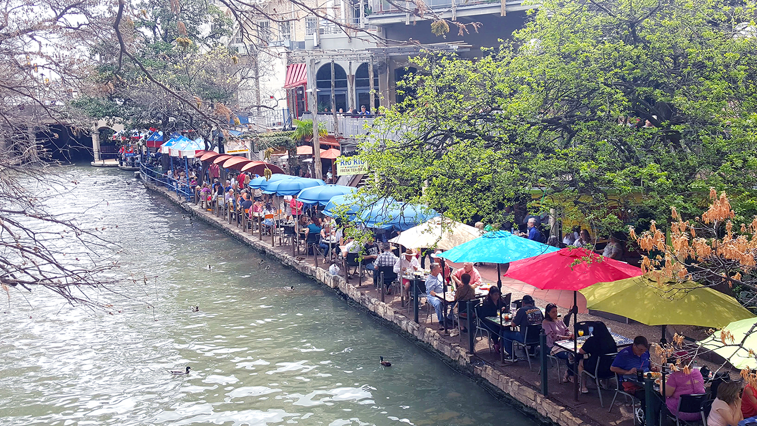 Top 4 Things To Do At The San Antonio River Walk