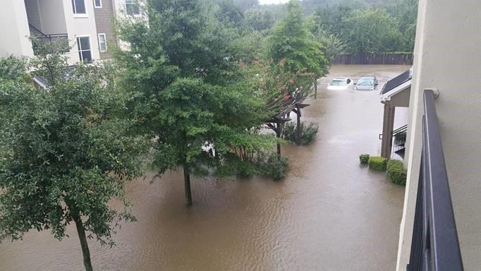 Camden Spring Creek 2