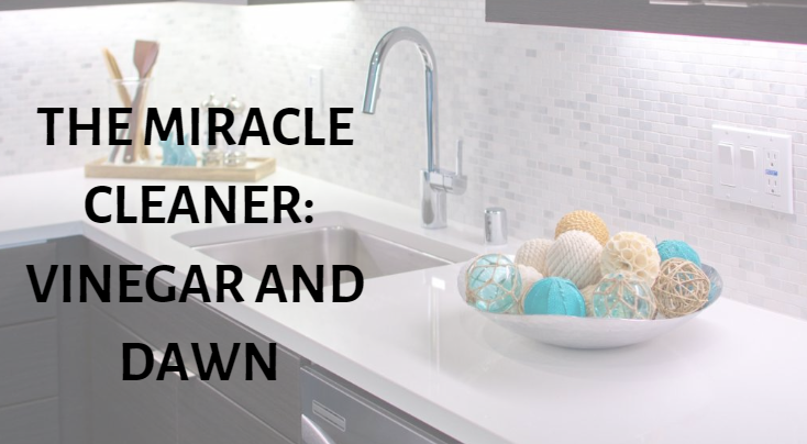 The Miracle Cleaner Vinegar And Dawn Camdenliving Com Gilbert