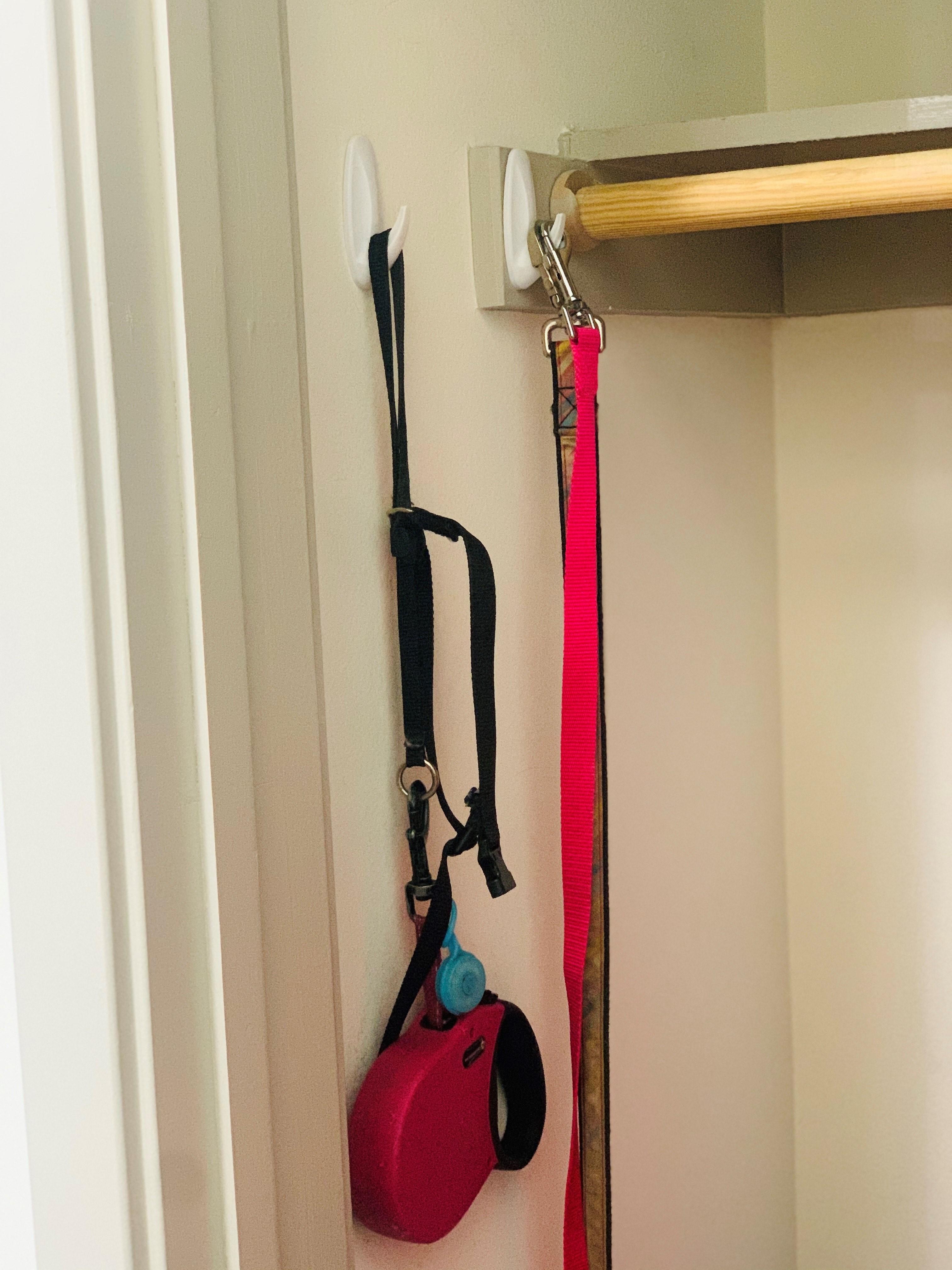 Sticky hooks used to hold dog leashes