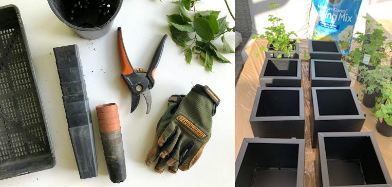 easy apartment herb garden