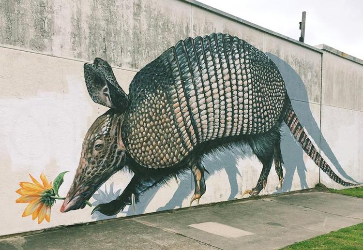 Houston Armadillo Art