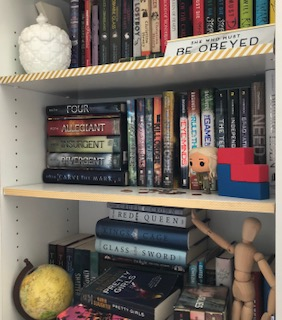 One of the many bookcases in my apartment home.