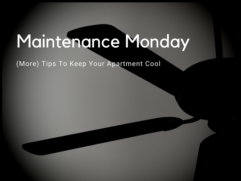 Maintenance Monday More Tips To Keep Your Apartment