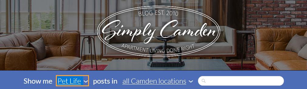 camden-blog-pets