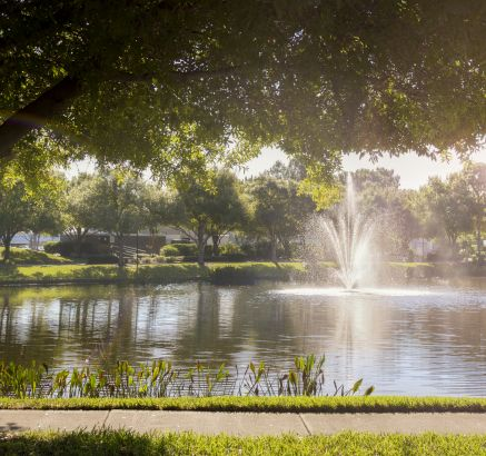 Camden Bay Apartments in Tampa, FL fountain