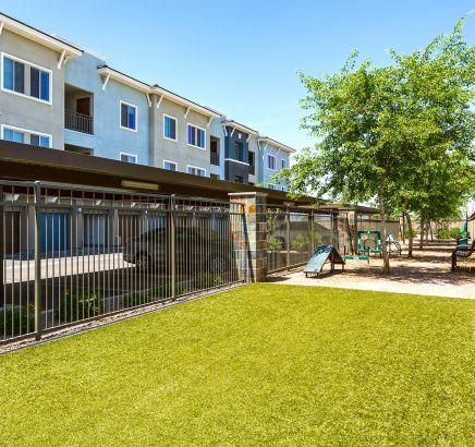 Dog Park at Camden Chandler Apartments in Chandler, AZ