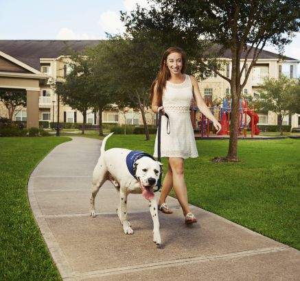 Pet-friendly with green space at Camden Downs at Cinco Ranch Apartments in Katy, TX
