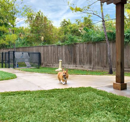 Dog Park with Wash Station at Camden Heights Apartments in Houston, TX