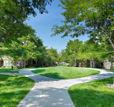 Green Space at Camden Highlands Ridge in Apartments in Highlands Ranch, CO