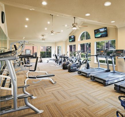 Fitness Center at Camden Holly Springs Apartments in Houston, TX