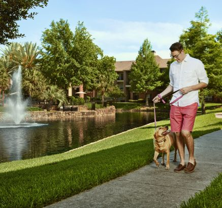 Pet-Friendly with Green Space and Walking Trail at Camden Holly Springs Apartments in Houston, TX