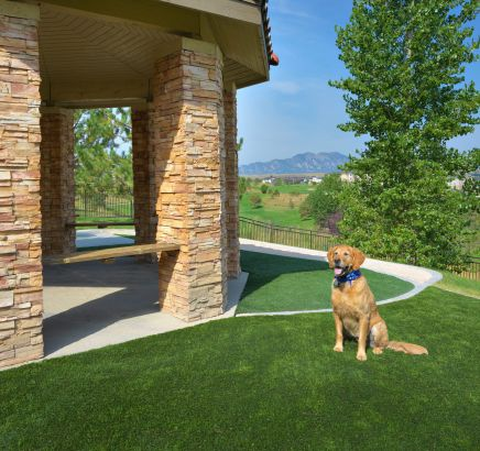 Dog Park at Camden Interlocken apartments in Broomfield, CO