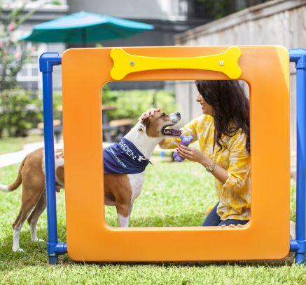 Pet Park at Camden Midtown Houston Apartments in Houston, TX