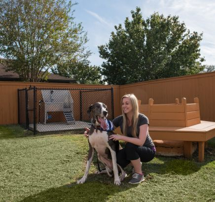 Pet Park at Camden Northpointe Apartments in Tomball, TX