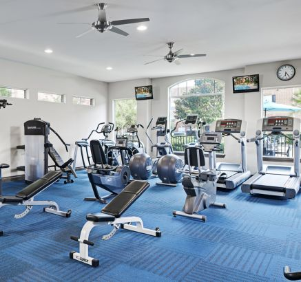 Fitness Center at Camden Oak Crest Apartments in Houston, TX
