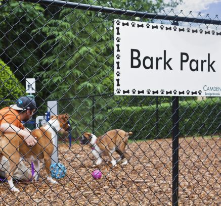 Pet Park at Camden Sedgebrook Apartments in Huntersville, NC