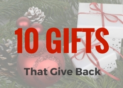 Ten Gifts That Give Back