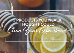 5 Products You Never Thought Could Clean Your Apartment