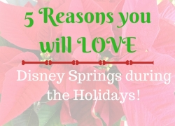 Disney Springs Orlando FL Holidays