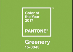 """Pantone Color of the Year 2017 """"Greenery"""""""