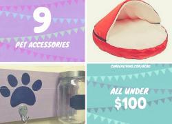 Top 9 Pet Accessories