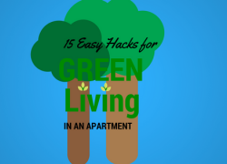15 Tips to Save Energy in Your Apartment Now