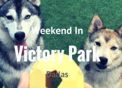 Weekend at Victory Park