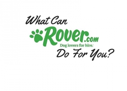 What Can Rover.com do for you?