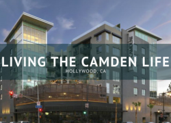 Living The Camden Life with Camden apartments, located in Hollywood, CA