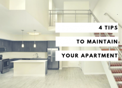 4 Tips to Maintain Your Apartment
