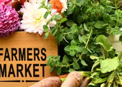 Healthy and Local - Houston Area Farmers Markets