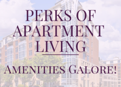Perks of Apartment Living: Amenities Galore