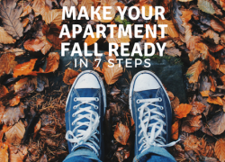 Make Your Apartment Fall Ready in 7 Steps