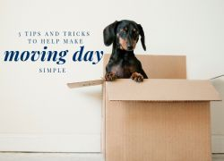 5 Tips and Tricks to Help Make Moving Day Simple