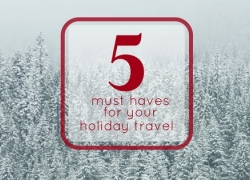 5 Must Haves for Your Holiday Travel