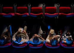 Movies-Summer--Must-See-Camden