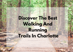 Discover the Best Walking and Running Trails in Charlotte