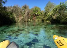 Kayak at Weeki Wachee Springs