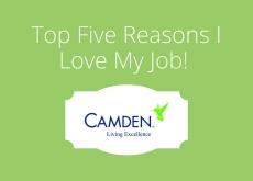 Top 5 Reasons I Love My Job!