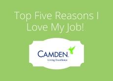 Top 5 Reasons I Love My Job!