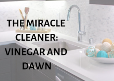 cleaning-home-bathroom-kitchen-vinegar-dawn