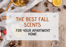 The Best Fall Scents for your Apartment Home