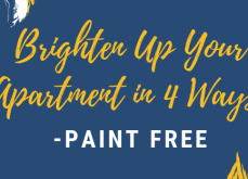 Brighten Up Your Apartment in 4 Ways-Paint Free
