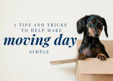 5 Tips and TrickstoHelpMakeMovingDaySimple
