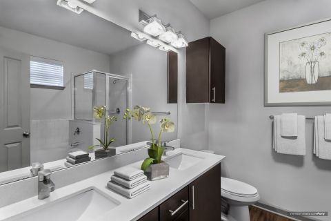Master Bathroom at Camden Asbury Village Apartments in Raleigh, NC