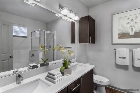Master Bathroom at Camden Asbury Village Apartments in Raleigh, NC