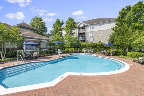 Resort-style Pool at Camden Ashburn Farm Apartments in Ashburn, VA