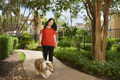 Green Space with Pet Clean-up Stations at Camden Breakers Apartments in Corpus Christi, TX