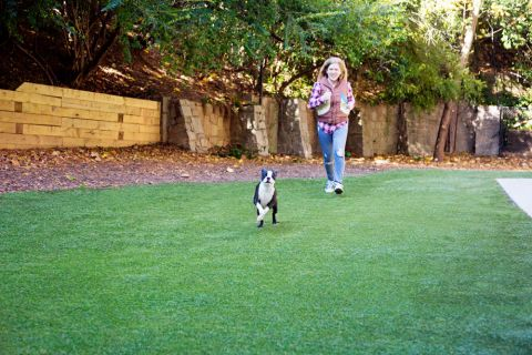 Dog Park at Camden Brookwood Apartments in Atlanta GA